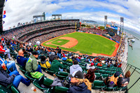 San Francisco Giants AT&T Park Stadium Fisheye Print