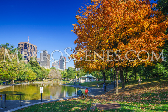 Boston with Fall Colors