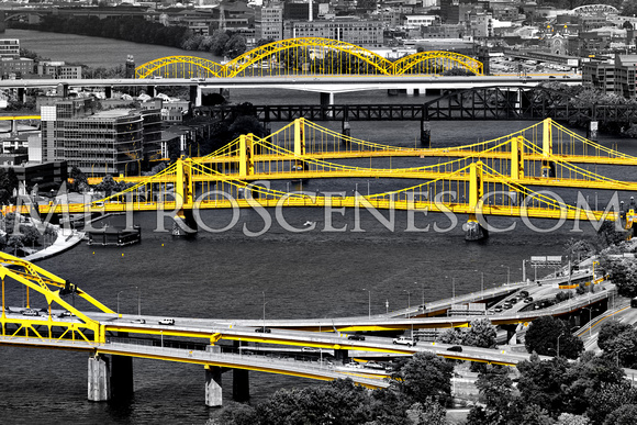 Pittsburgh Black and White and Yellow